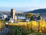 Blick auf Boosenburg und Brömserburg in Rüdesheim am Rhein