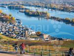 Rüdesheim am Rhein vom Wasser aus