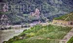 Aussicht auf die Burg Rheinstein