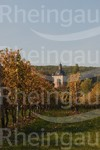 Schloss Vollrads im Herbst
