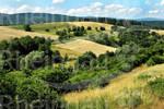 WisperTrails - Via Monte Preso