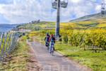 Fahrradfahren in den Rüdesheimer Weinbergen
